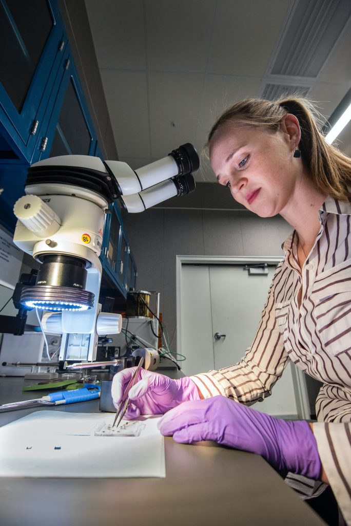 Texas Undergraduate Students Gain Advanced Biomedical Research Experience